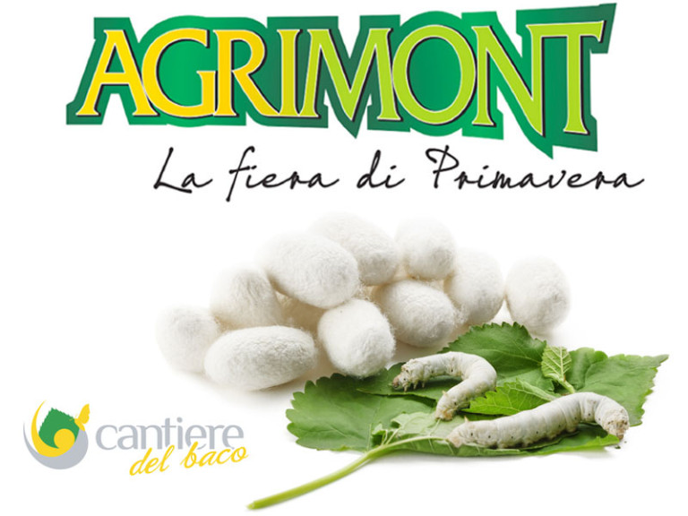 agrimont_cantiere_baco_web