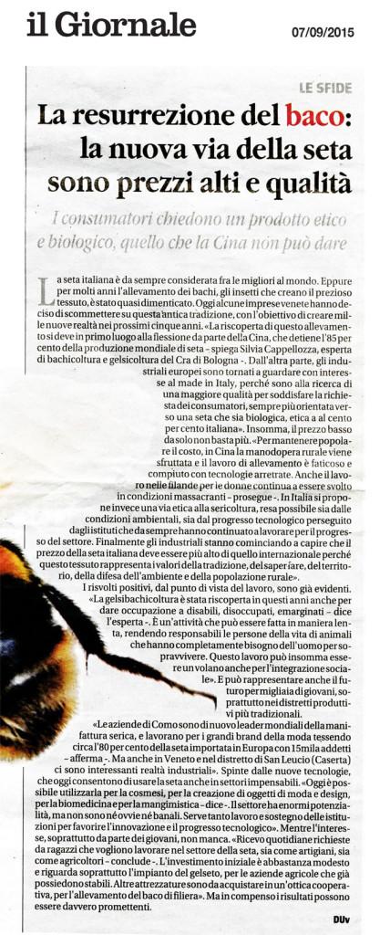 Il-giornale-7-9-15